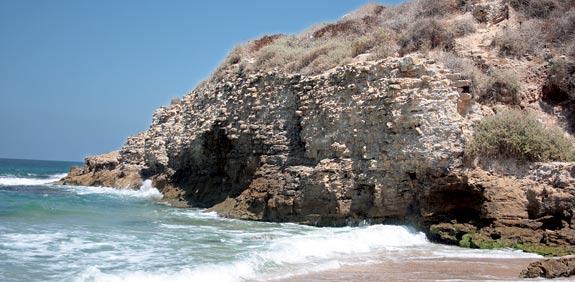 חוף הפלמחים / צלם: אורלי גנוסר